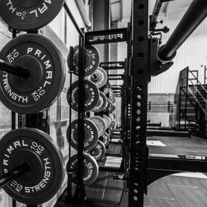 Chamber Gym